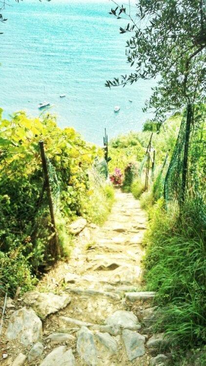 The Hike-Cinque Terre-Italie