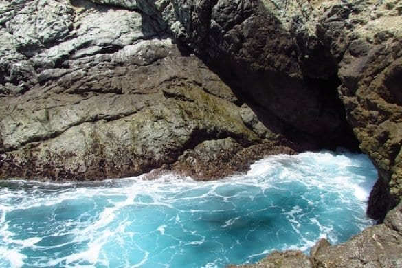 Partington Cove Trail-Big Sur-The Hike-1