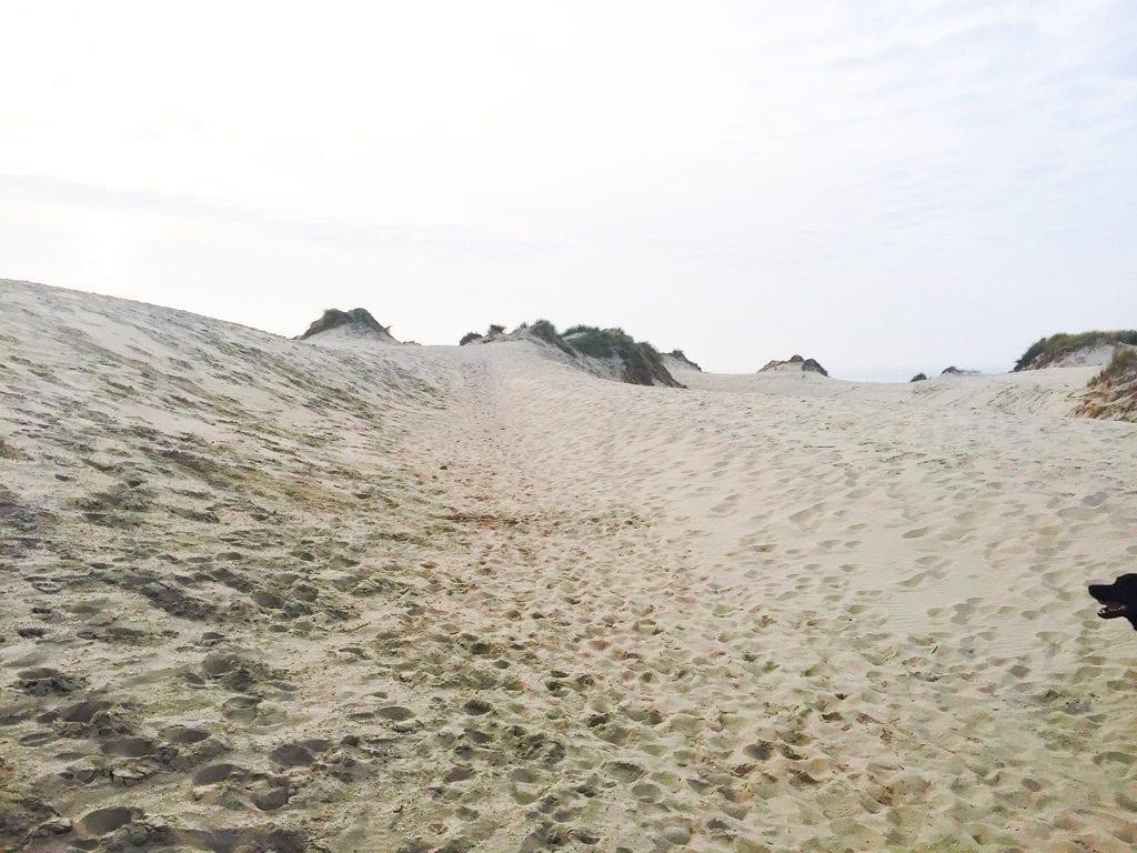 mooie strandwandeling herfst