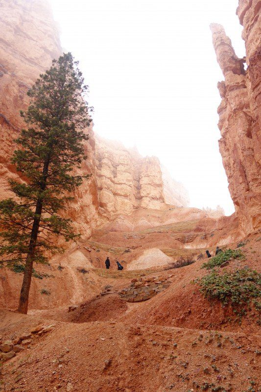 Bryce Canyon-The Hike
