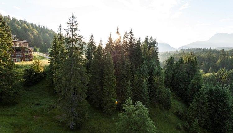 Luxueuze hotels-Das Kranzback
