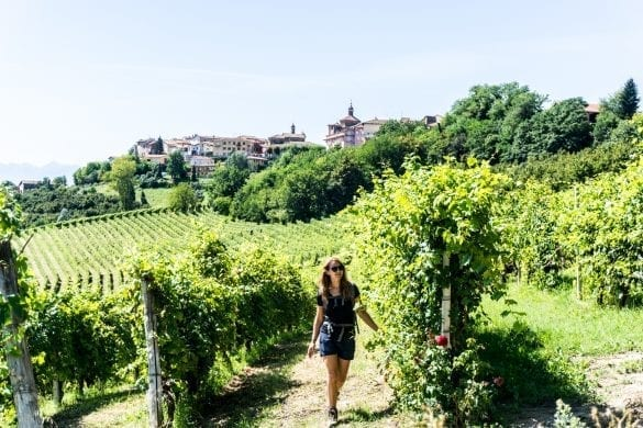 Wijn hike in Barolo