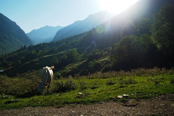 hiken in Georgië