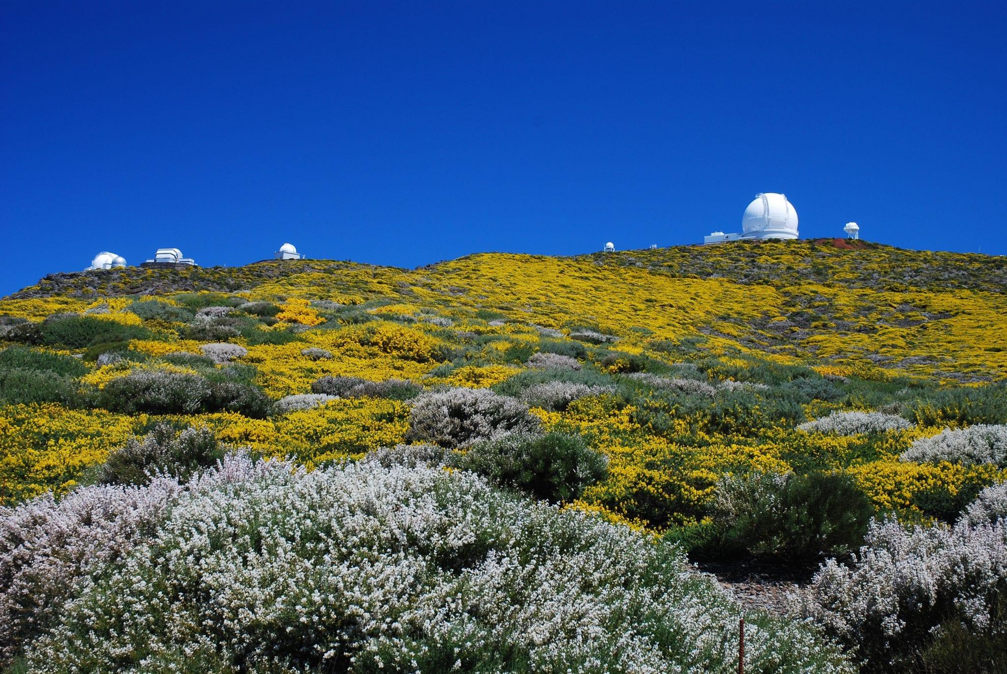 Sterrenhemel op La Palma 2