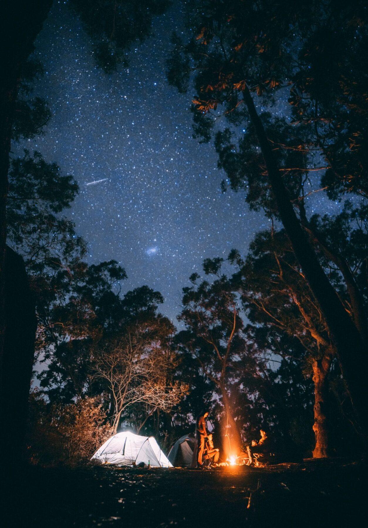 Paalkamperen Camping 1 - jonathan forage