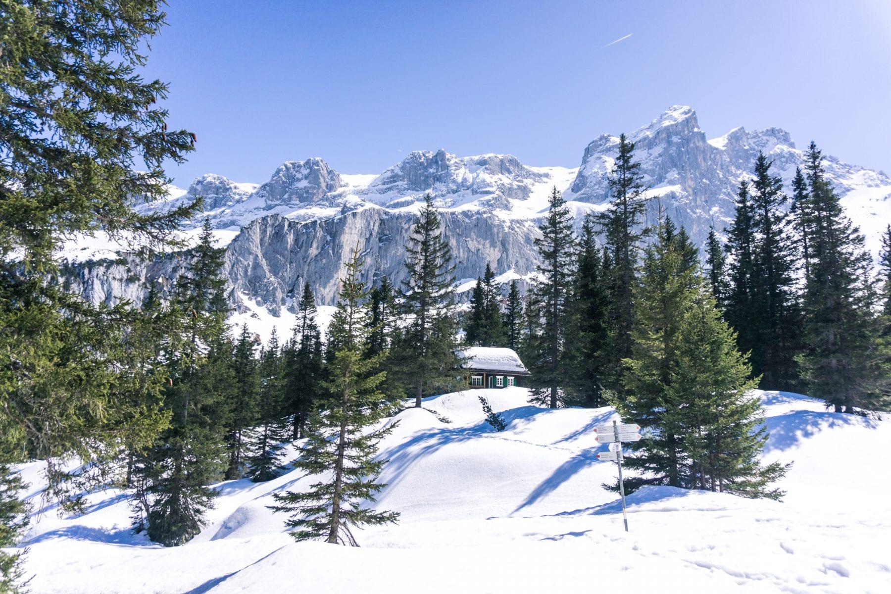 mooiste hike in Schruns-huis te koop Oostenrijk