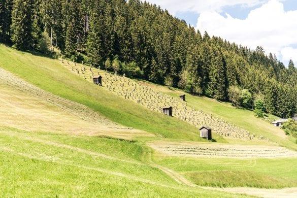 Innsbruck Trek gras drogen