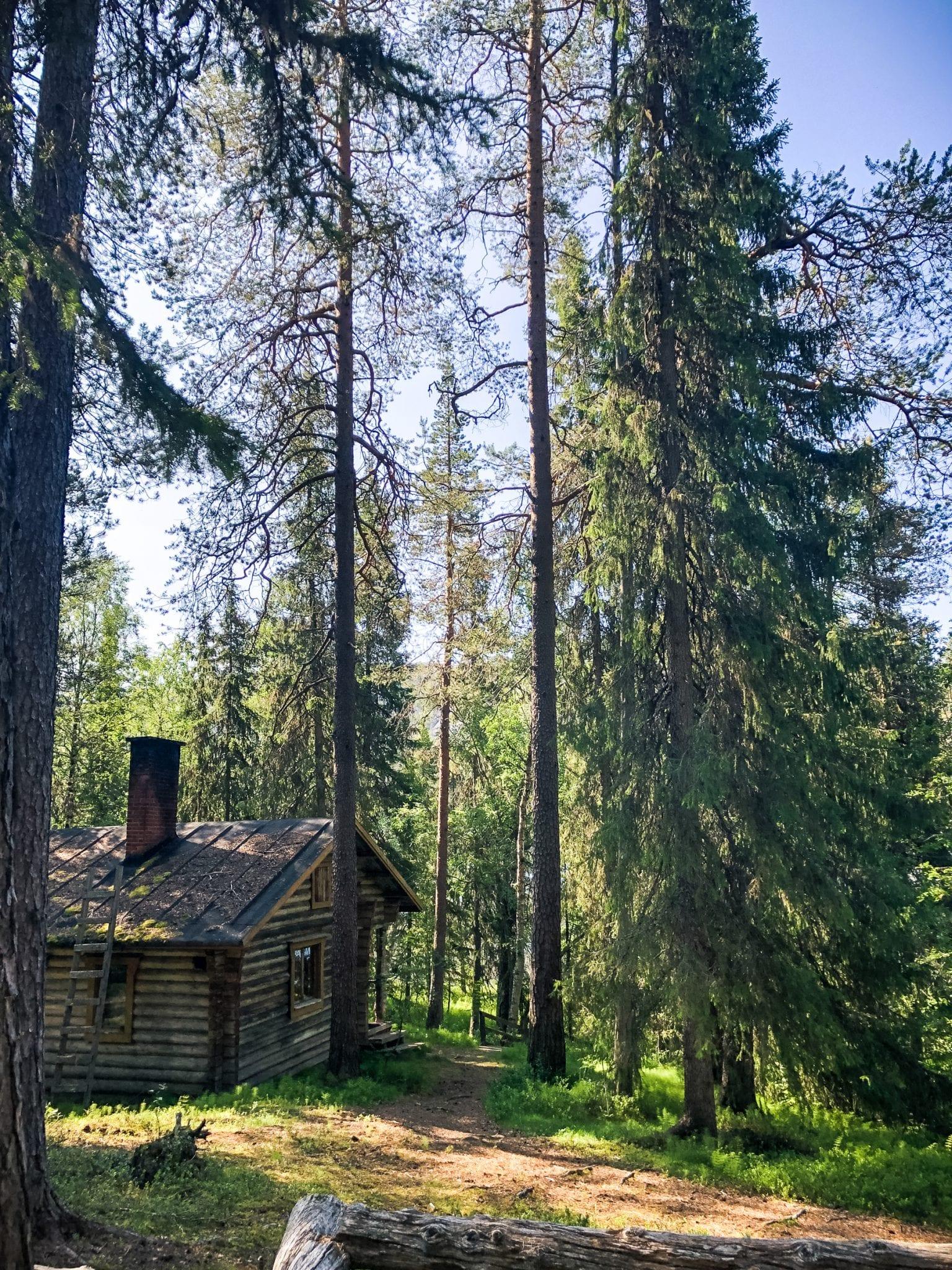 Finse cultuur