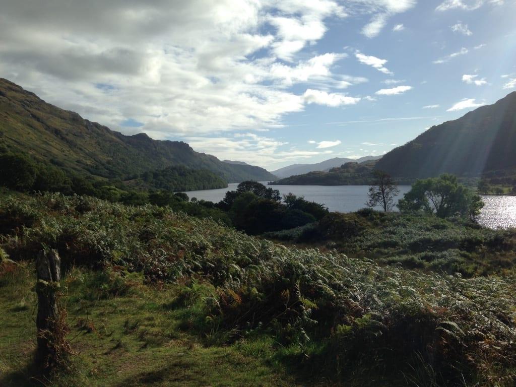 Schotse wilde geit zoektocht