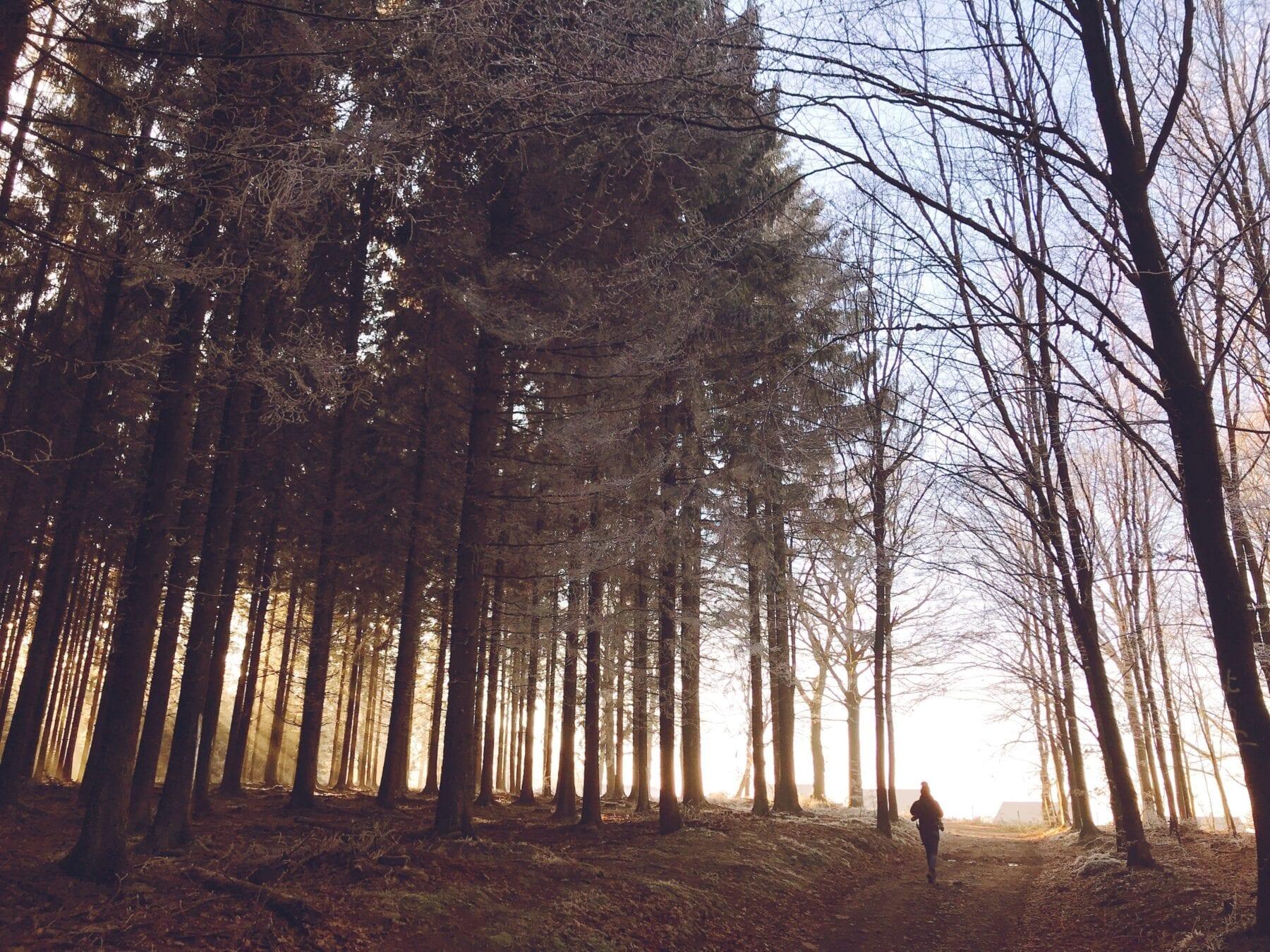 beste wandelroute van het jaar belgie
