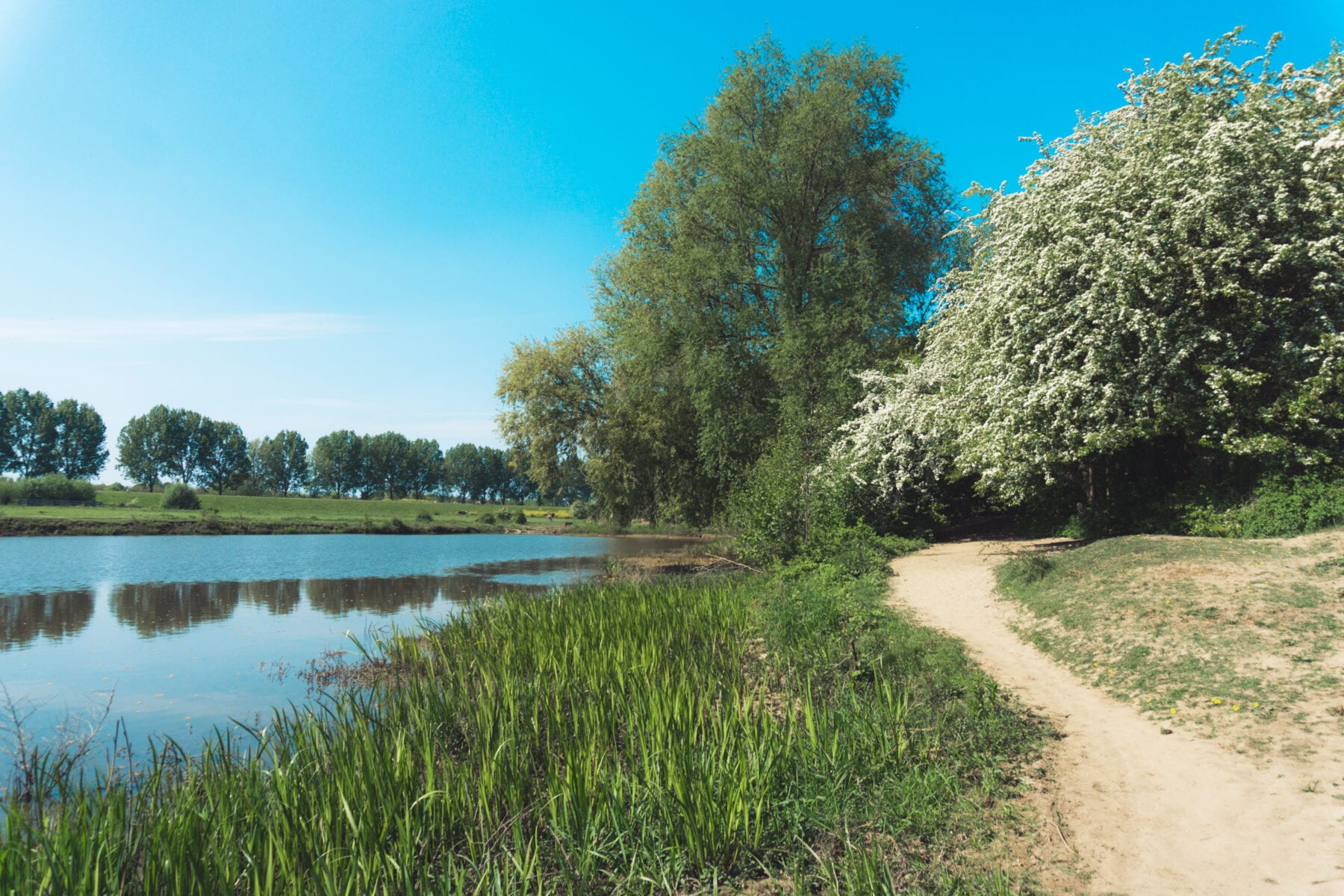 Maasuiterwaarden wandelen Den Bosch bij de Empelse Waard