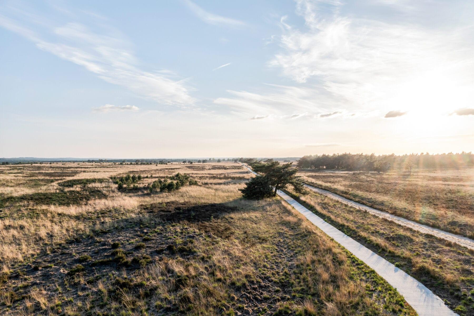 Nationaal park Veluwezoom Jeroen van Rooijen
