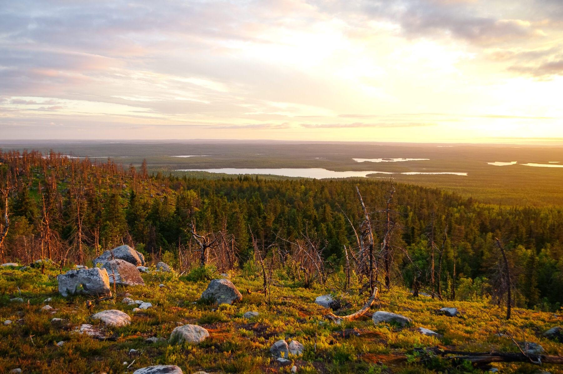 noordpoolcirkel Siberië hittegolf