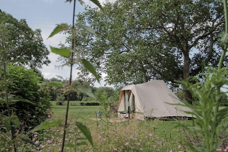 Camping landgoed den Bosch