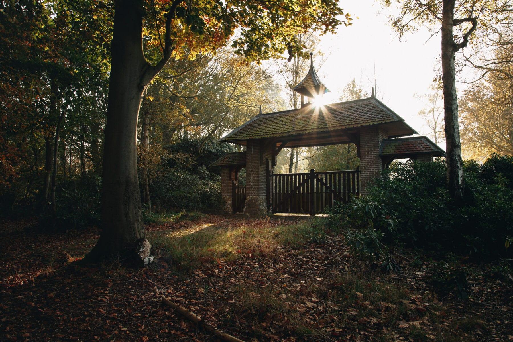 Nationaal Park de Sallandse Heuvelrug foto Ronald Jansen 6