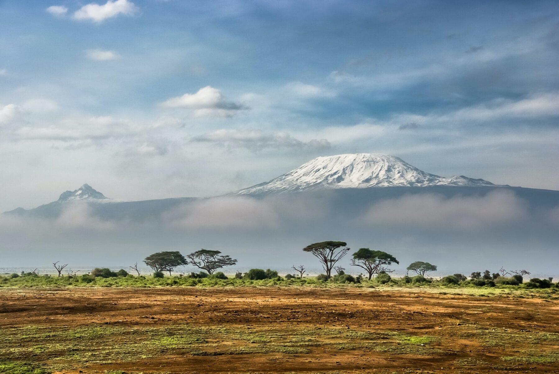 Kilimanjaro brand