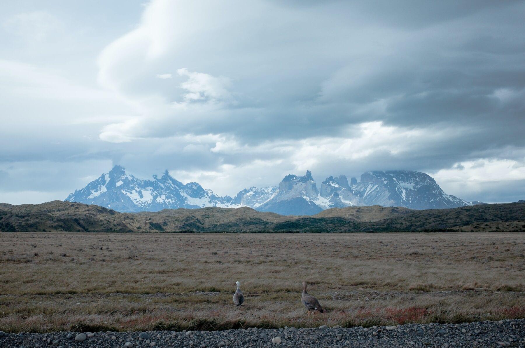 Patagonie horizon