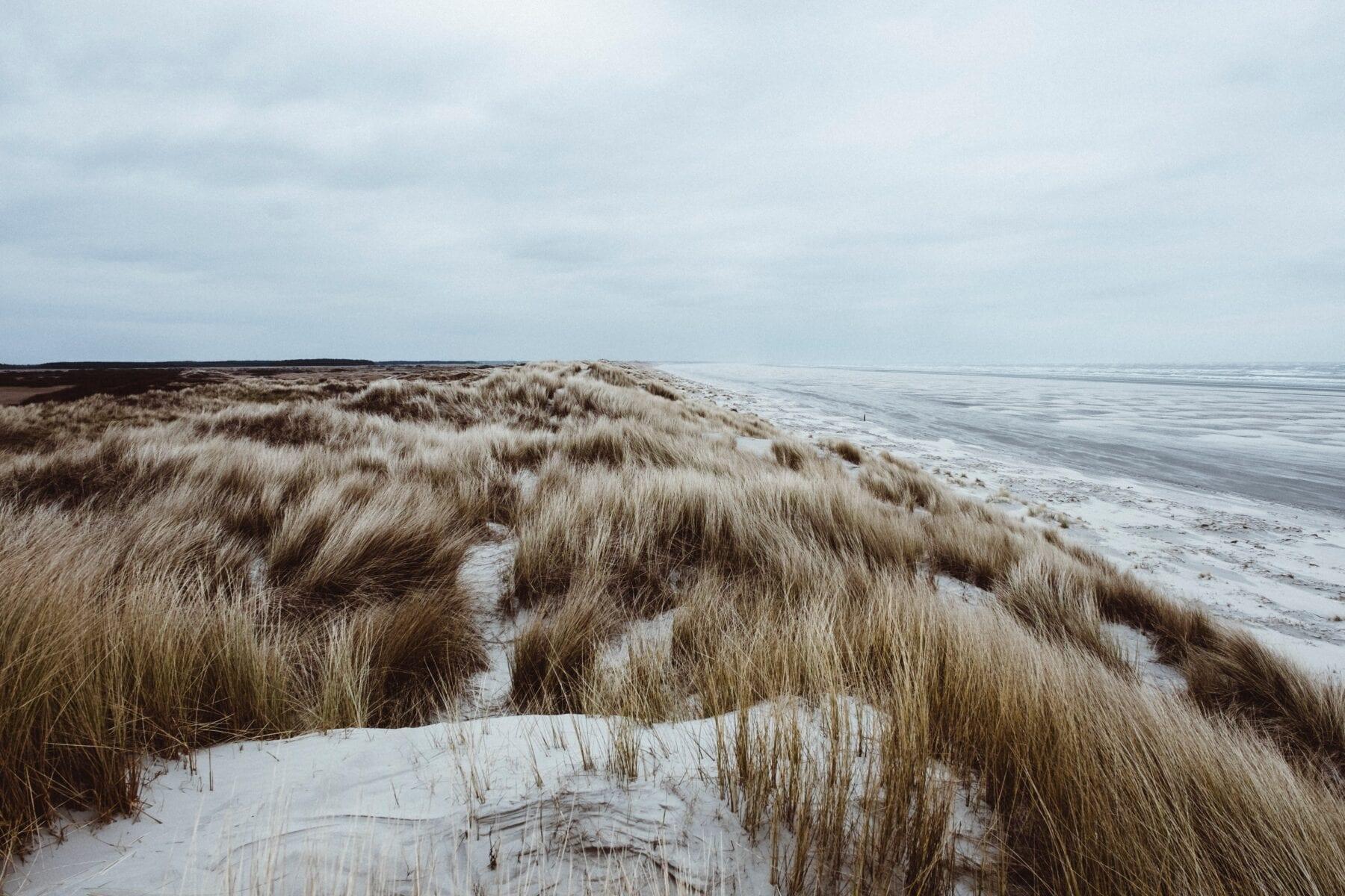 Het waddengebied duinen