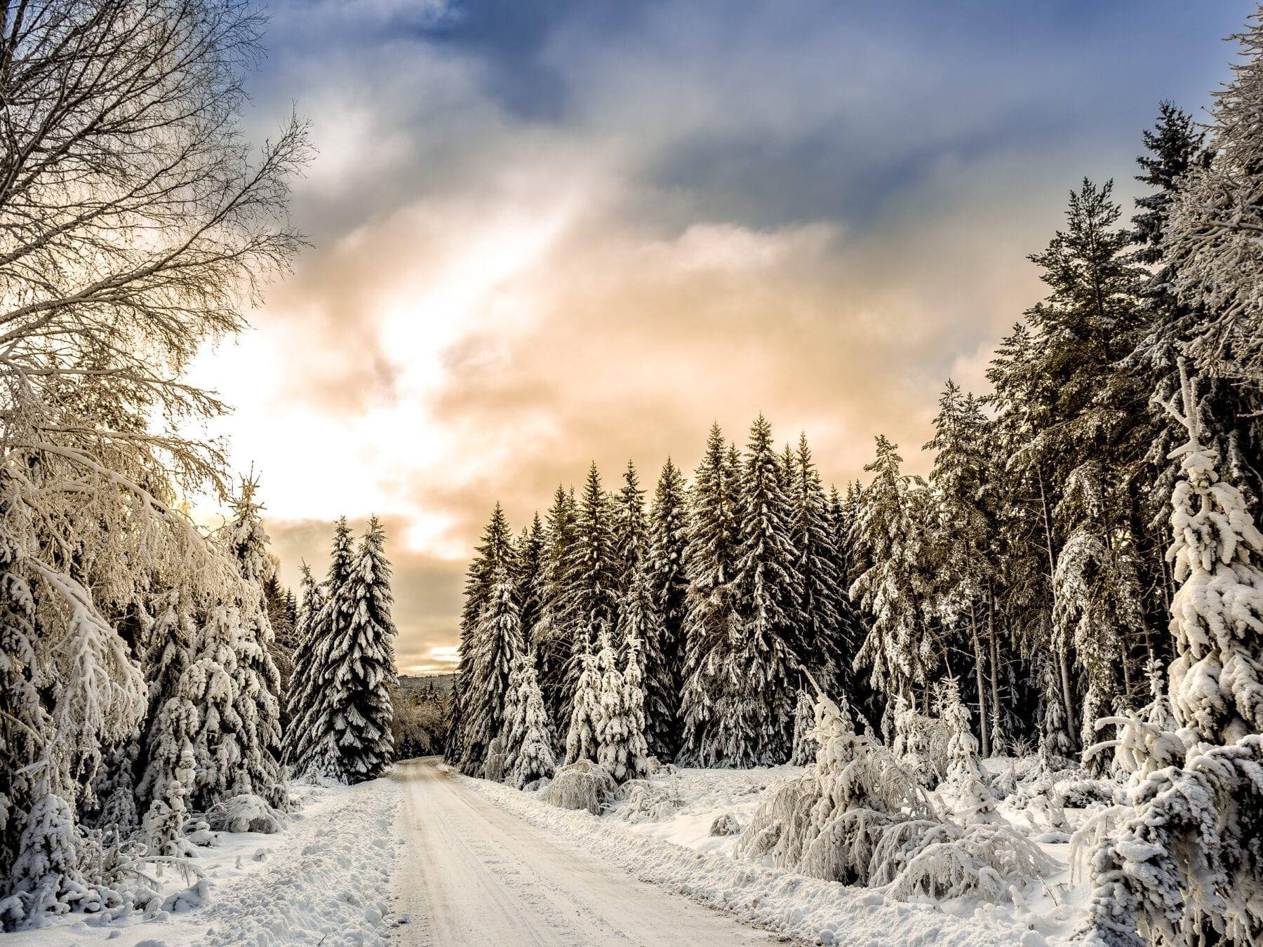 Foto's Zweden sneeuw