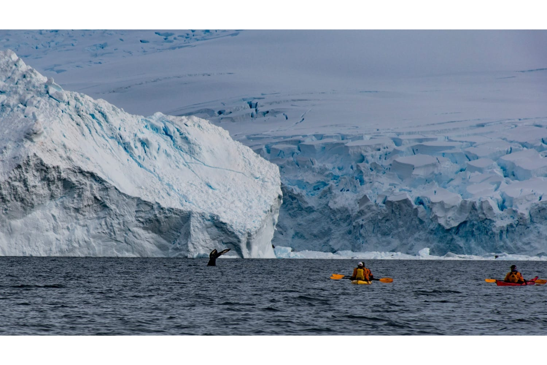 reis naar antarctica