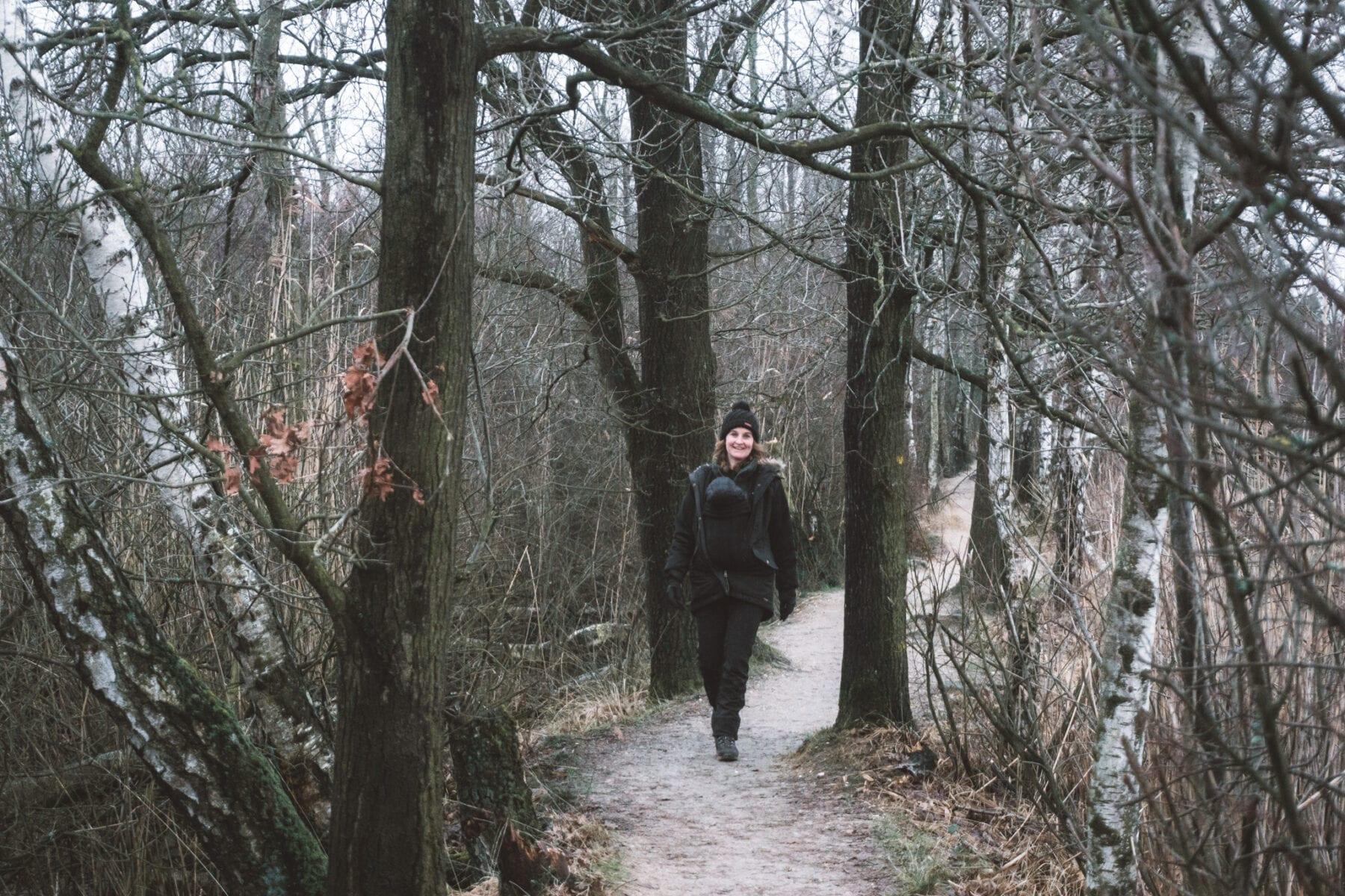 Wandelen in de Kempen-Cartierheide