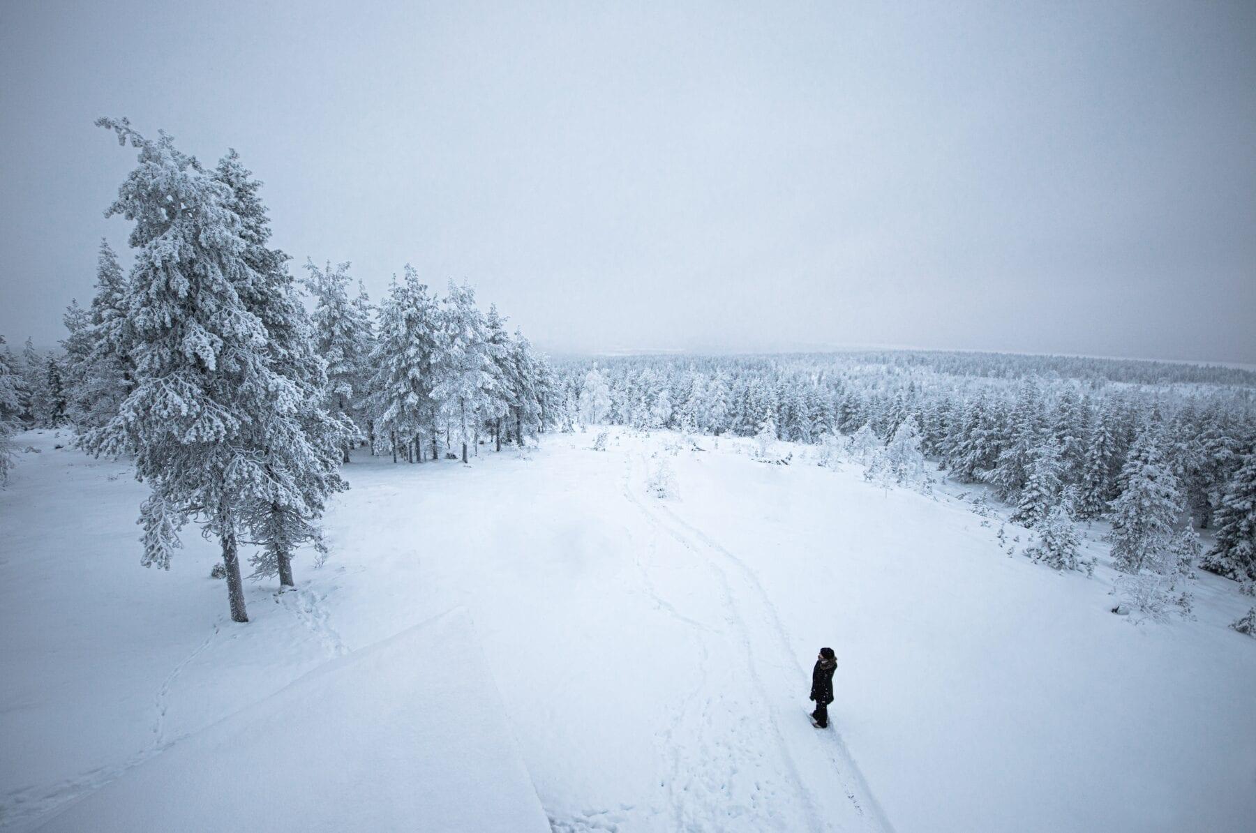 25 prachtige foto's van Lapland wildernis