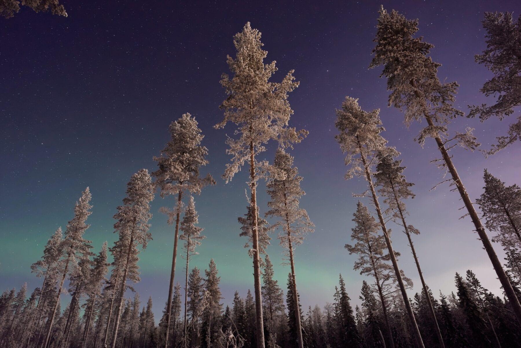 25 prachtige foto's van Lapland Noorderlicht