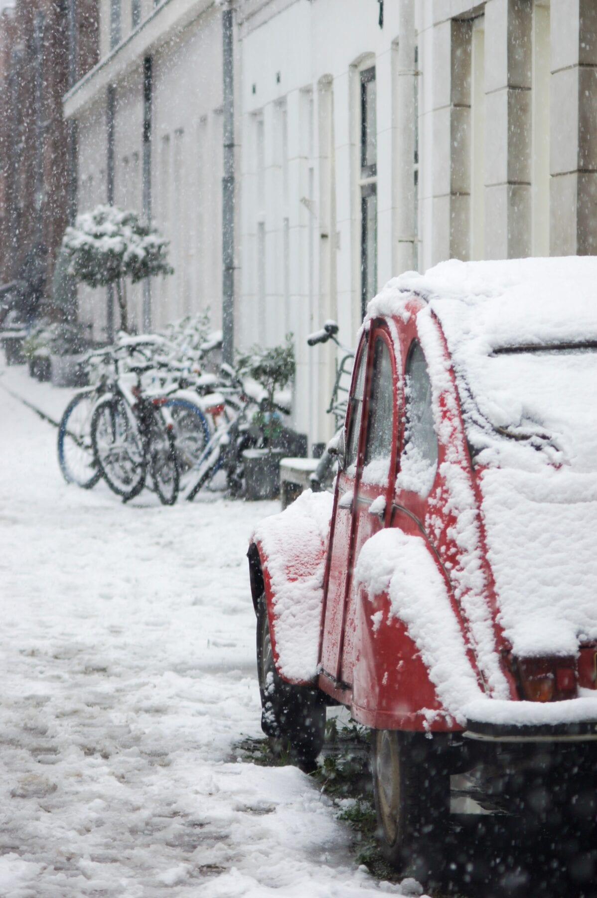 Lelijk eendje in de sneeuw