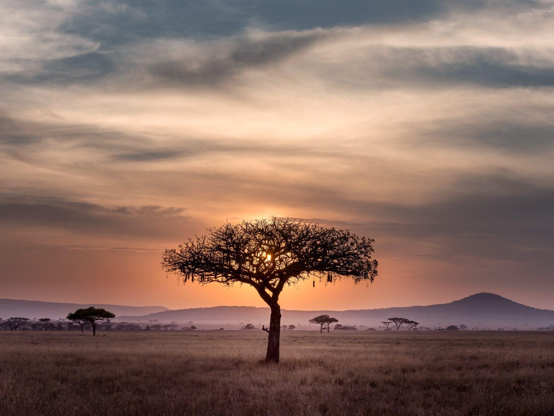 Zuid-Afrika Landschap zonsondergang