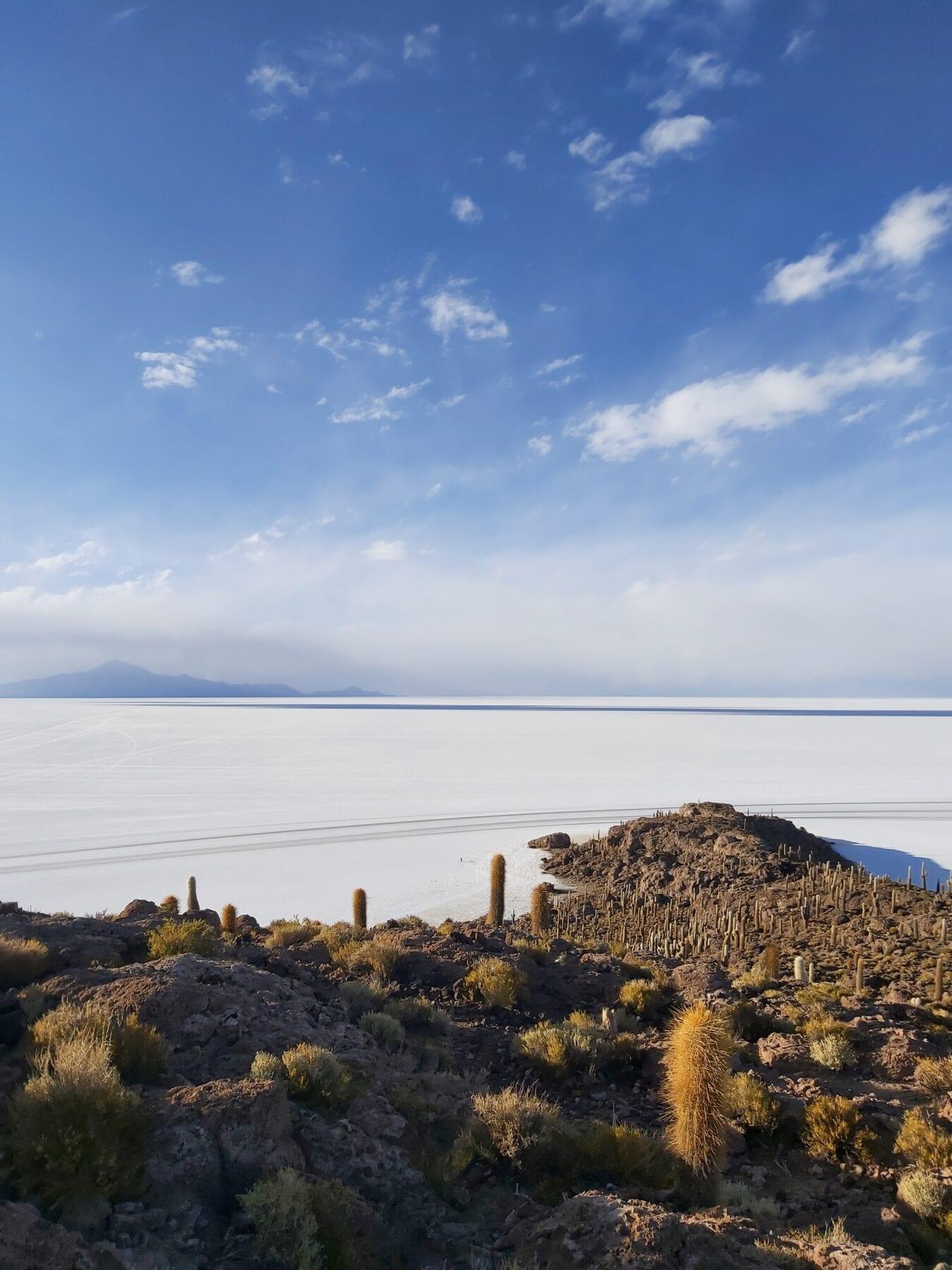 Eiland in de zoutvlakte in Bolivia