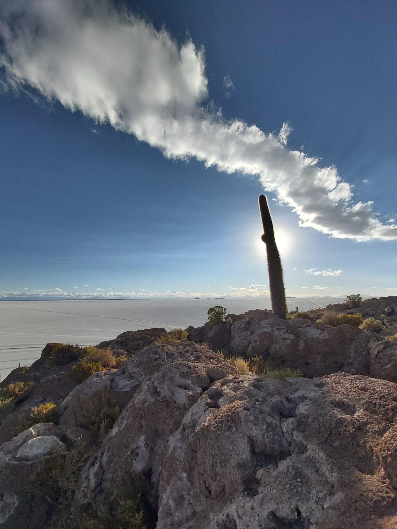 Eiland zoutvlakte Bolivia
