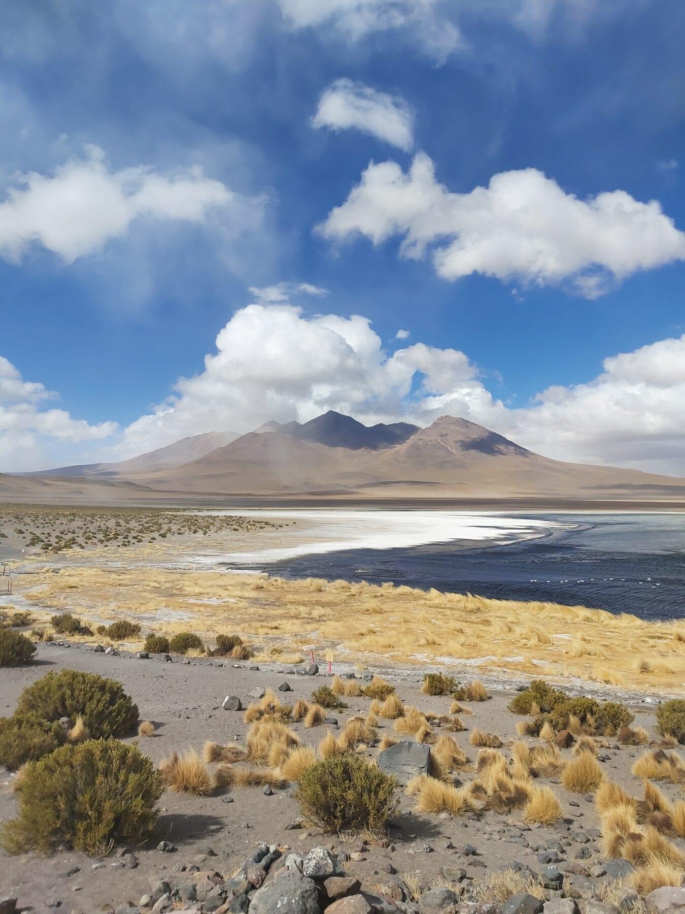Landschap van Bolivia