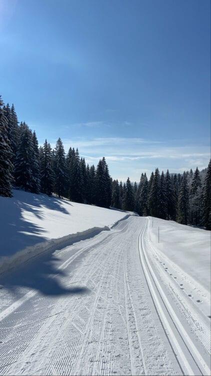 Langlaufen in de Jura