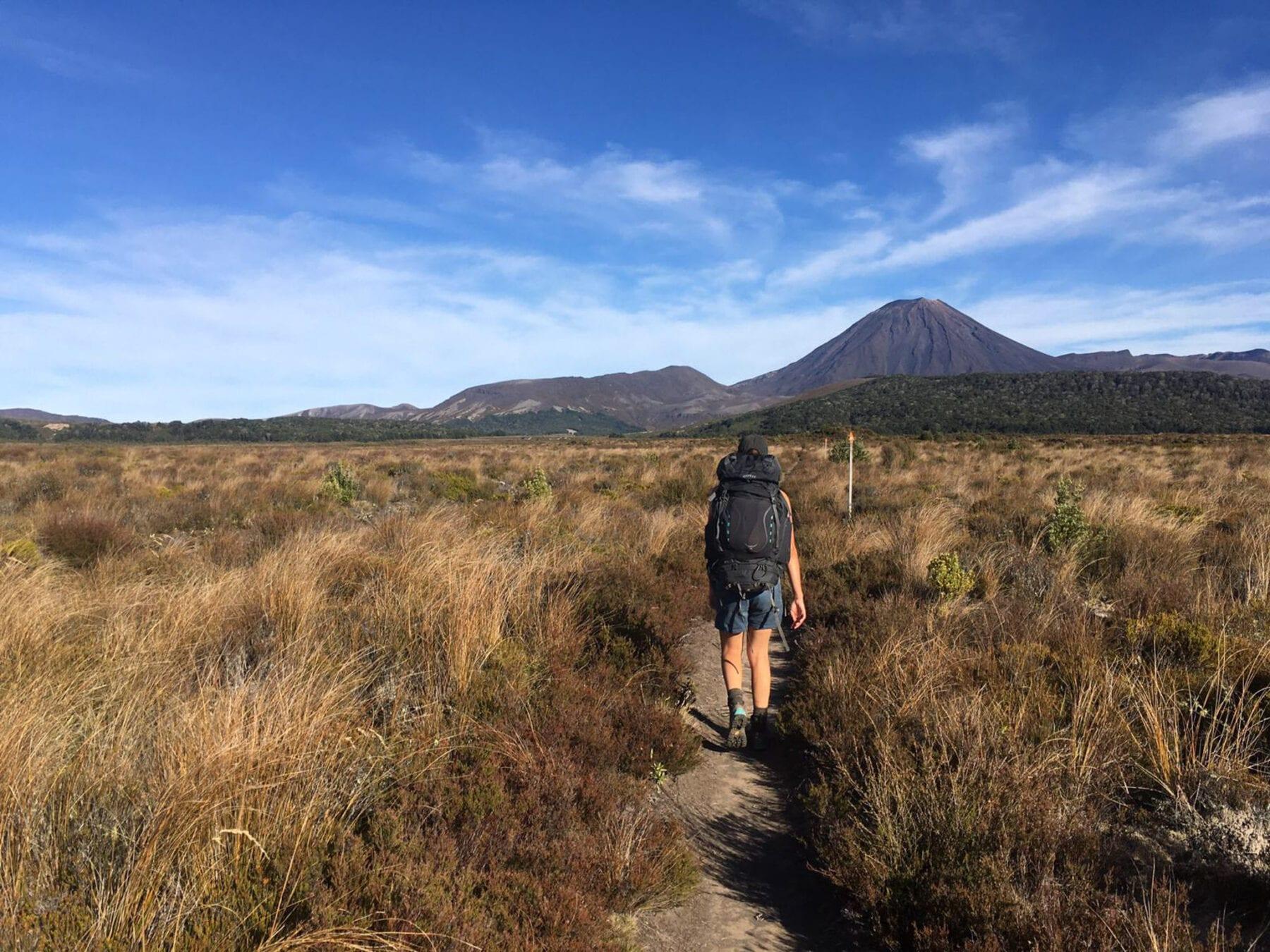 Mount Ruapehu wandelen