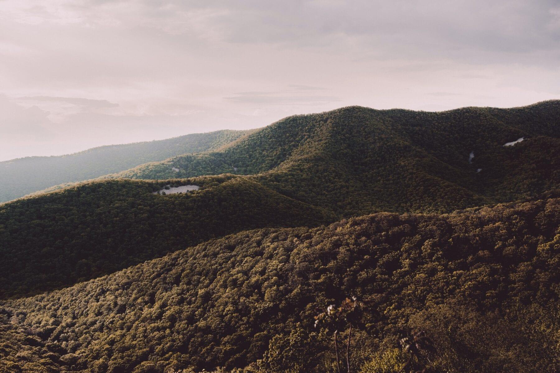 Roadtrip Amerika Shenandoah National Park