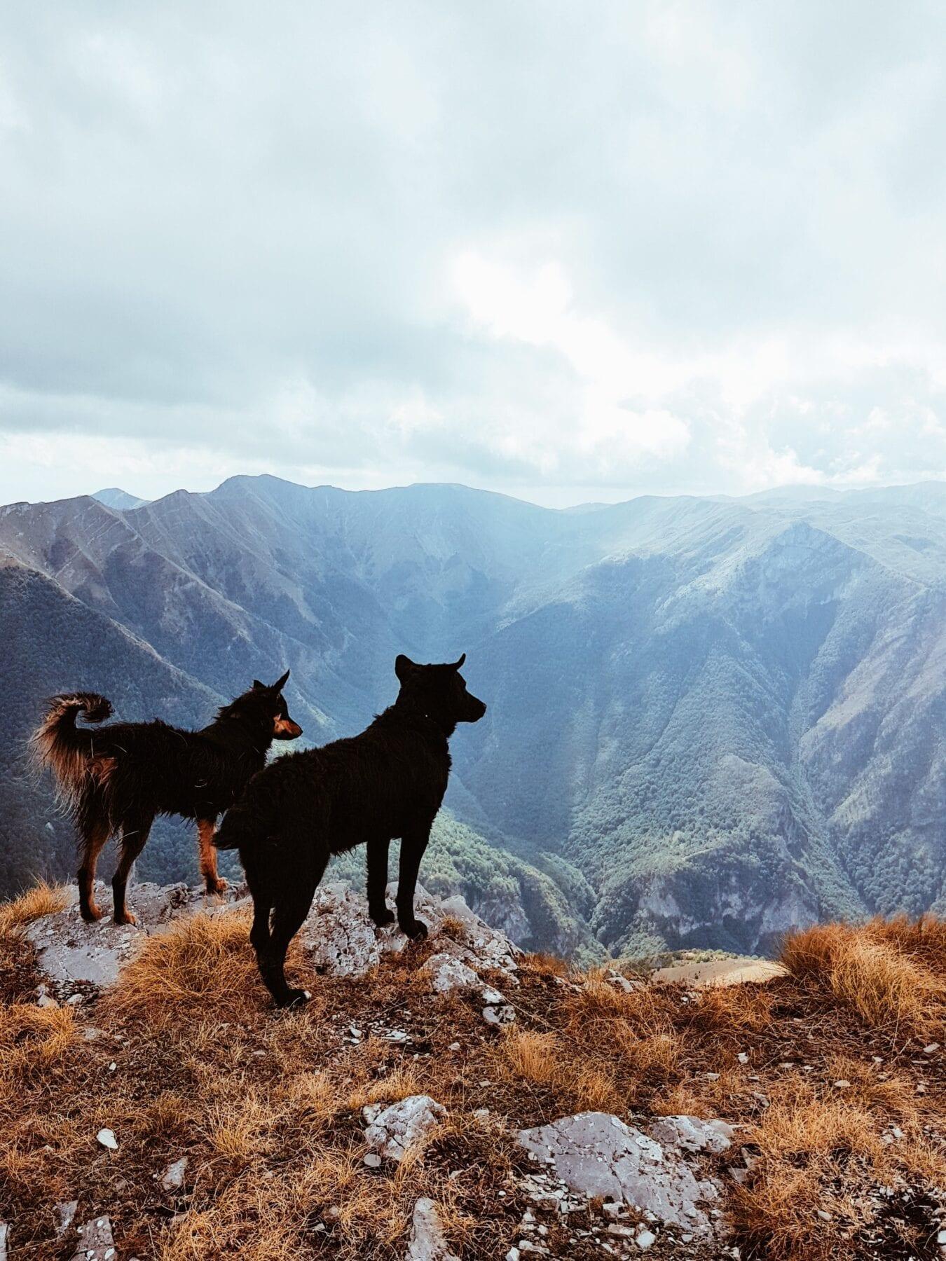 Mooi uitzicht over de bergen in Bosnië en Herzegovina