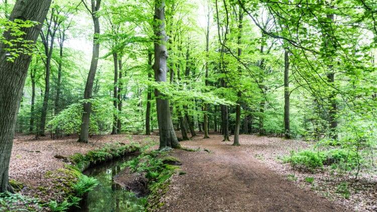 Landgoederen Brabant Landgoed De Baest