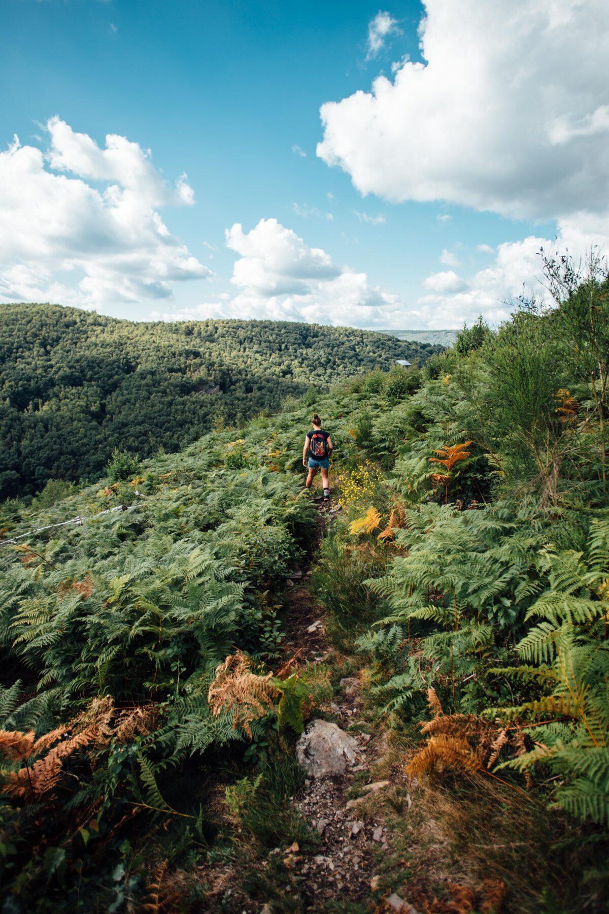 Wandelen Ardennen Frankrijk