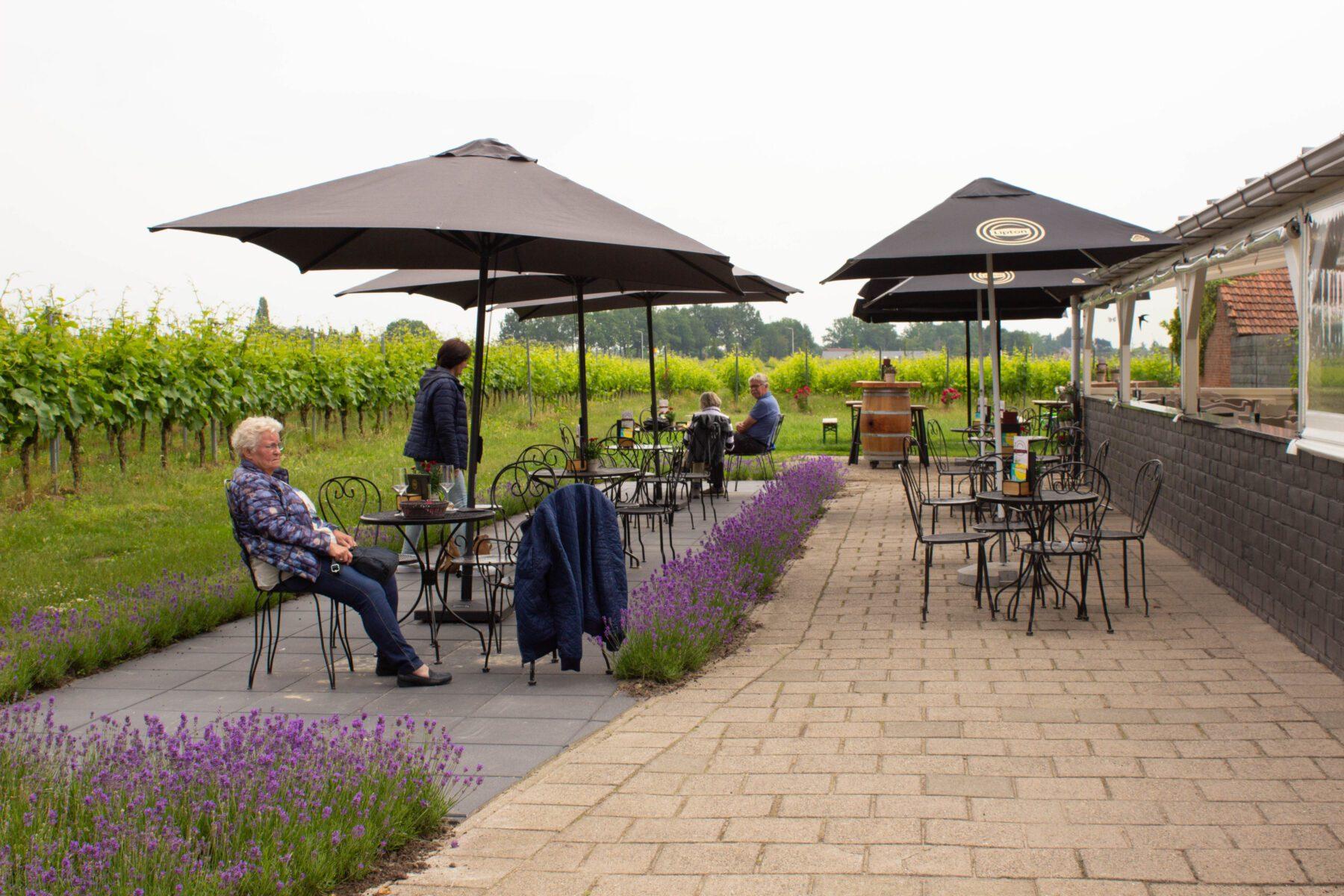 Terras Hof van Baarle