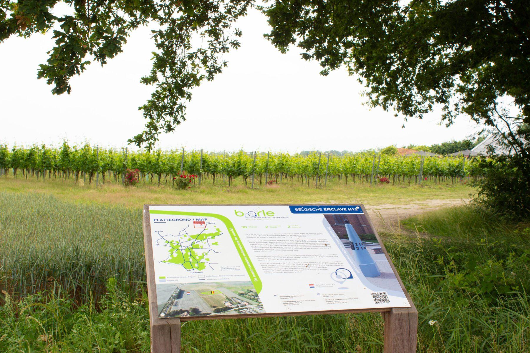 Wijngaard Hof van Baarle
