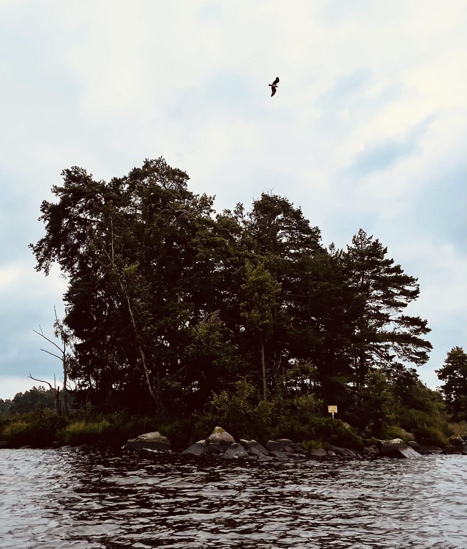 Åsnen National Park