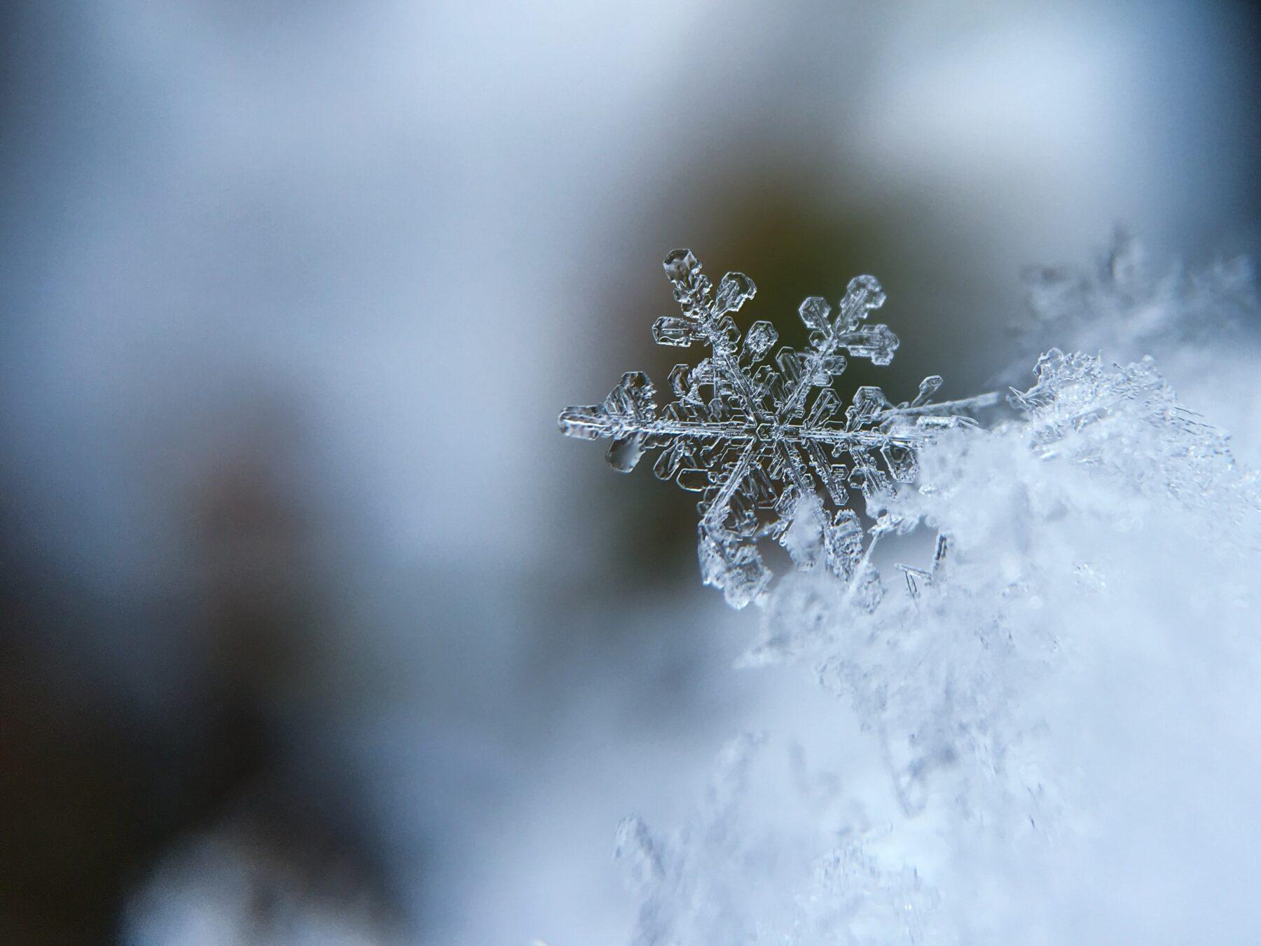 sneeuwvlokje