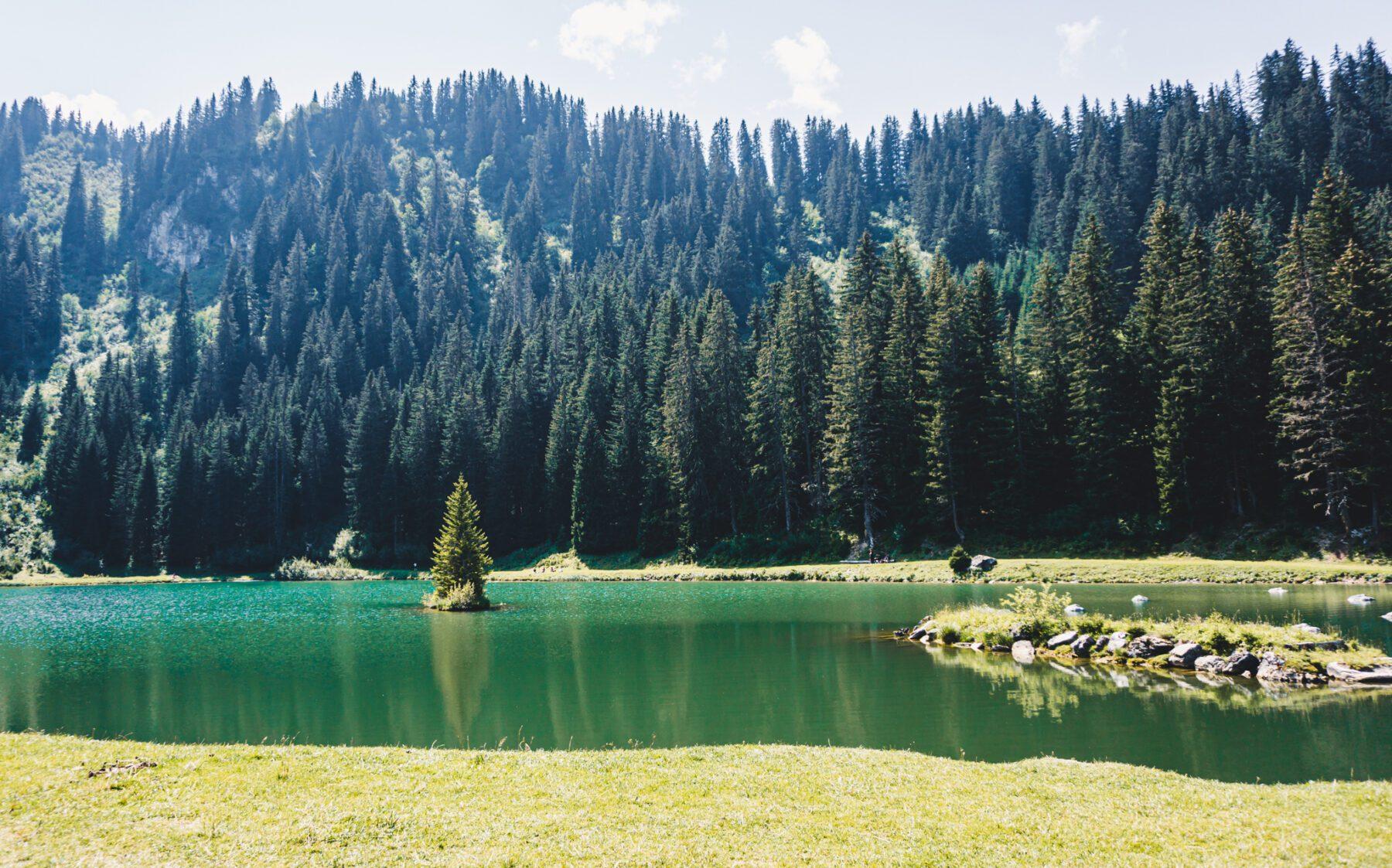 Châtel in de zomer meer