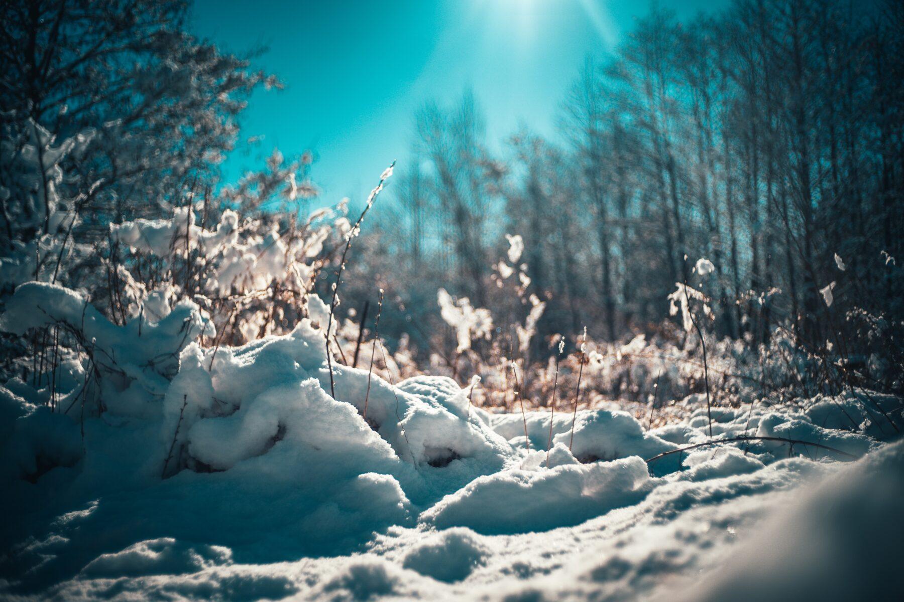 weetjes sneeuw smelten